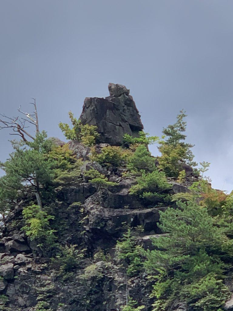 エボシ岩の熊